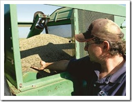 hemp-seed-farmer